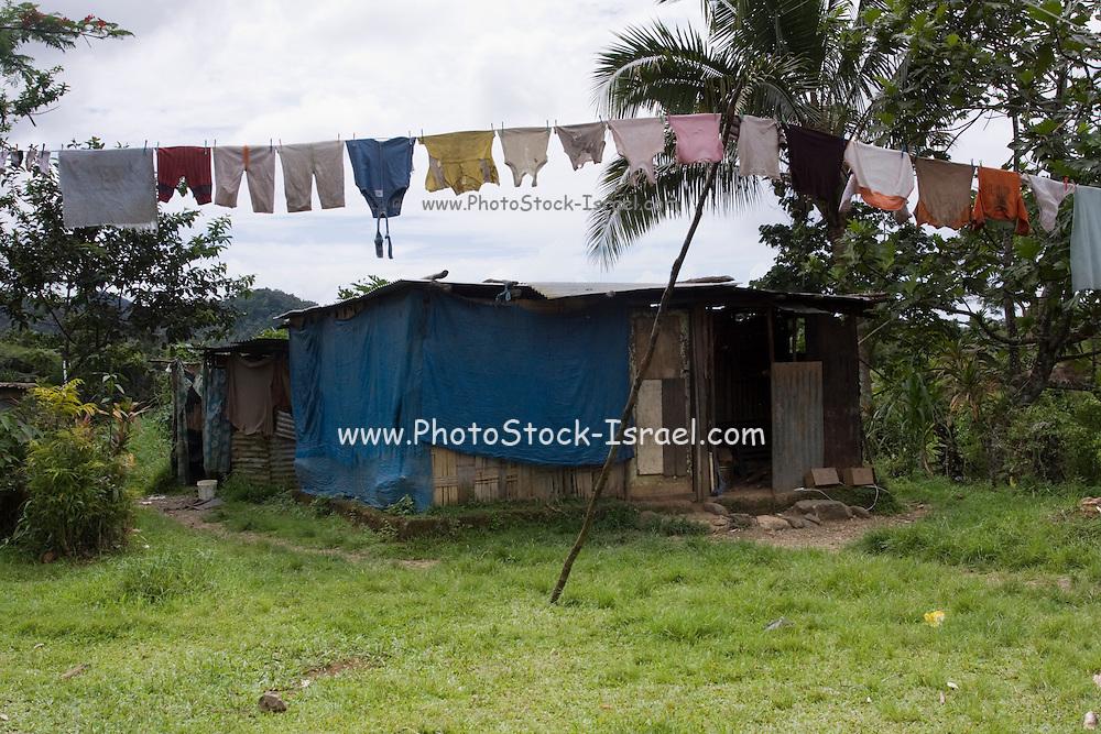 Fiji, shanty house