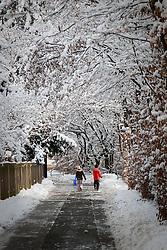 05.12.2010, Graz, AUT, Winter in Graz, im Bild Kinder in Winterlandschaft auf dem Weg zum Bobfahren oder Rodeln, EXPA Pictures © 2010, PhotoCredit: EXPA/ Erwin Scheriau