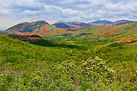 Scenery, Province Sud (Great South region) of Grand Terre (the main island), New Caledonia