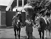 """04/08/1960<br /> 08/04/1960<br /> 04 August 1960<br /> R.D.S Horse Show Dublin (Thursday). Master Norman Aston (aged11) who tied with himself in Competition """"E"""" for children over a special course, pictured with his two horses """"Sea Breeze"""" and """"Bambi""""."""
