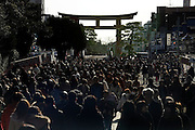 Kamakura Japan the Hachimangu shrine torii and a  very large crowd of people