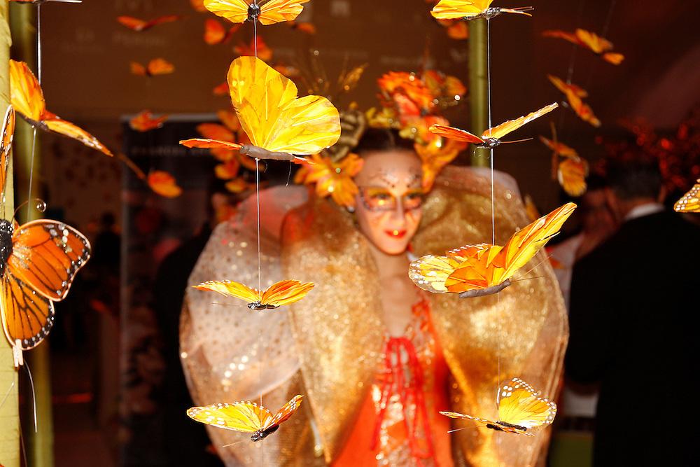 Curator 2011 dancer with butterflies