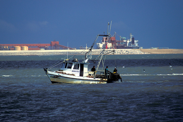 Stock photo of an oyster boat travelling through the bay to harvest oysters