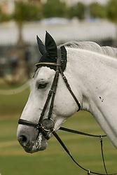 Becker Otto (GER) - Dobel's Cento<br /> Jumping day 1<br /> World Equestrian Games Jerez de la Fronteira 2002<br /> Photo © Dirk Caremans
