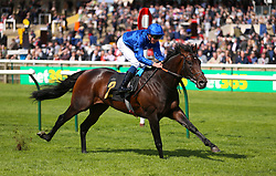 Aurum ridden by jockey William Buick wins the Alex Scott Maiden Stakes during day one of The Bet365 Craven Meeting at Newmarket Racecourse, Newmarket.