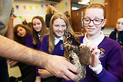 12/11/2018 Repro free: Galway Science and Technology Festival, the largest science event in Ireland, runs from 11-25 November featuring exciting talks, workshops and special events. Full programme at GalwayScience.ie. Pupils from Our  Lady's College Galway  with a beetle from The Bug Doctors collection ( Dr Michel Dugon- NUI Galway) Photo:Andrew Downes, Xposure.