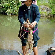 A Lanten woman wearing her traditional clothing makes prepares bamboo for making paper which is used during religious ceremonies. The Lanten or Yao Mun are a small but distinctive group of the Yao ethnic minority residing in northern Laos, Vietnam and China.  Maintaining a strong cultural identity, they are easily recognised by their hand woven, indigo dyed attire. One of the most ethnically diverse countries in Southeast Asia, Laos has 49 officially recognised ethnic groups although there are many more self-identified and sub groups. These groups are distinguished by their own customs, beliefs and rituals.