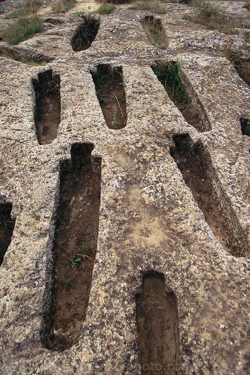 Rock tombs from Roman times at the Remelluri Winery in Labastida, .La Rioja, Spain.