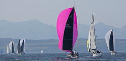 Largs Regatta Festival 2019<br /> <br /> GBR8272T, Satisfaction, Nicholas Marshall, St Mary's Loch SC, J 92