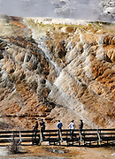 Tourists enjoy the Mammoth Hot Springs from the boardwalk, Yellowstone National Park, Wyoming, USA