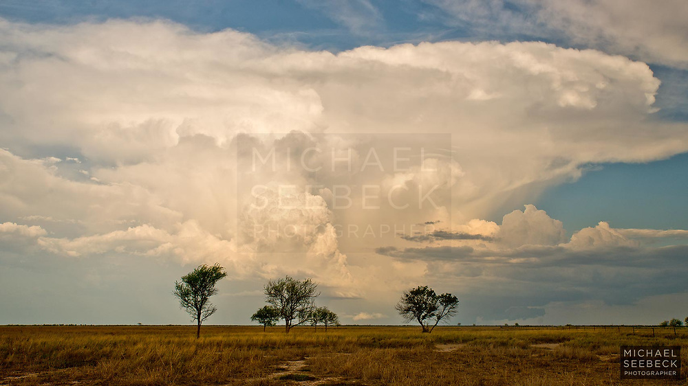 A developing thunderstorm over the plains east of Karumba in the Gulf Country of Queensland.<br /> <br /> Code: WAQG0001<br /> <br /> Open Edition Print / Stock
