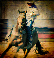 NEW Works by Craig W. Cutler Photography / DesignLIFE. <br /> <br /> Drama and Beauty, Light and Texture, all artistically conveyed in this HIGHLY-LIMITED Equestrian and Nature edition of Fine Art artworks.  <br /> <br /> Shot with Canon & Leica bodies and lenses, these are Craig Cutler's latest American West artworks.