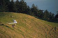 Hang glider taking off from green hillside on Mount Tamalpais, Marin County, California