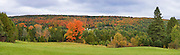 View of Fall colored trees from grass hilltop on farm.