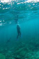 Isla Espiritu Santo in the Sea of Cortez, Mexico.