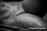 www.alejandrafigueroa.com