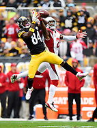 NFL football game between the Arizona Cardinals and the Pittsburgh Steelers, Sunday, Oct. 18, 2015, in Pittsburgh, Pa. (Photo by Joe Sargent/Panini)