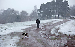 © Licensed to London News Pictures. 04/04/2012. Clent, Worcsestershire, UK. Snow covers the Clent Hills in Worcestershire. Pictured, dog walkers struggle to climb the Clent Hills. Photo credit : Dave Warren/LNP
