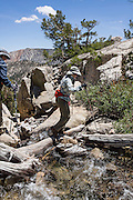 A hiker with poles crosses the outlet of Lower Lamarck Lake in John Muir Wilderness, Inyo National Forest, Sierra Nevada, California, USA. In the Bishop Creek watershed, enjoy a scenic hike from North Lake to Lamarck Lakes. The moderate trail to Upper Lamarck Lake is 5.5 miles round trip with 1550 feet cumulative gain. For licensing options, please inquire.
