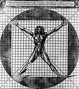 Proportions of the human body after Leonardo's studies, also called Vitruvian man.  Male human body with limbs extended, superimposed on a grid and a circle. Engraving from Cesarino's 1521 edition of Vitruvius 'De architectural'.