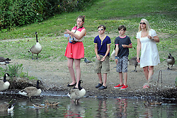 """© Licensed to London News Pictures. 14/07/2013. A family feeding ducks and geese with bread. An unusual sign telling visitors """"Don't Feed The Rats"""" in a pond at Chislehurst Common in South East London. You would normally associate a trip to the local pond with feeding the ducks but at Prickend Pond on Chislehurst Common a problem with rats, worsened by the feeding of bread to ducks and geese, has become so serious that the local trust has taken to putting up signs in an attempts to solve the problem. <br />  Photo credit :Grant Falvey/LNP"""
