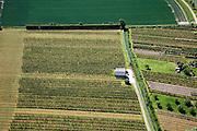 Nederland, Zeeland, Zuid-Beveland, 12-06-2009; Boomgaarden omgeven door windschermen (windsingels), met nieuwe aanplant (links) van laagstammige boompjes..Swart collectie, luchtfoto (25 procent toeslag); Swart Collection, aerial photo (additional fee required).foto Siebe Swart / photo Siebe Swart