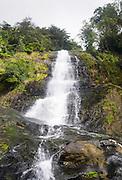 Los Prieto Falls, El Yunque National Forest, north of Naguabo, Puerto Rico.