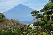 Japan, Honshu Island, Kanagawa Prefecture, Fuji Hakone National Park, Mount Fuji