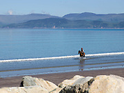 A rider and his horse cool down in the  in virtually calm conditions of the Atlantic Ocean at Rossbeigh, County Kerry, Ireland.<br /> Photo: Don MacMonagle