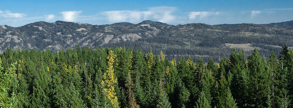 Forest fire smoke rises above the Wenah Tucannon Wilderness as viewed from the Hoodoo fire lookout tower, Umatilla National Forest, Blue Mountains, Oregon, USA