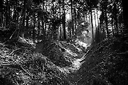Argonne Forest WW1 Hill 285 - Meuse-Argonne Battlefield site, France. March 2014<br /> Mine craters and trenches on hill 285-Cote 285, where German and French soldiers bitterly contested the position held by French troops during 1915.<br /> The Argonne Forest offensive, part of the final 100 days of WW1 and a major attack on the wetern side of Verdun, was the largest battle in American history up to this point and involved 1.2 million American soldiers.<br /> <br /> Caption information below from Wikipedia:<br /> The Meuse-Argonne Offensive, also known as the Maas-Argonne Offensive and the Battle of the Argonne Forest, was a part of the final Allied offensive of World War I that stretched along the entire Western Front. It was fought from September 26, 1918, until the Armistice on November 11, a total of 47 days. The battle was the largest in United States military history, involving 1.2 million American soldiers, and was one of a series of Allied attacks known as the Hundred Days Offensive, which brought the war to an end. The Meuse-Argonne was the principal engagement of the American Expeditionary Forces during the First World War.<br /> The logistical prelude to the Meuse attack was planned by then-Colonel George Marshall who managed to move US units to the front after the St. Mihiel salient fighting. The big September/October Allied breakthroughs (north, centre and south) across the length of the Hindenburg Line – including the Battle of the Argonne Forest – are now lumped together as part of what is generally remembered as the Grand Offensive (also known as the Hundred Days Offensive) by the Allies on the Western front. The Meuse-Argonne offensive also involved troops from France, while the rest of the Allies, including France, Britain and its dominion and imperial armies (mainly Canada, Australia and New Zealand), and Belgium contributed to major battles in other sectors across the whole front.<br /> <br /> The French and British armies' ability to fight unbro