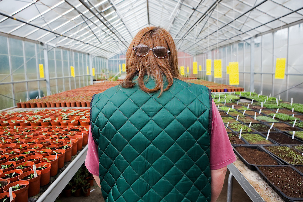 Sylvie, prisoner and head of the new seedlings greenhouse at HMP Downview.