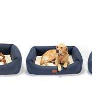 A studio product shoot to show a range of different sized dog beds.