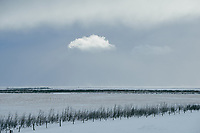 Cloud on a winter sky, snow covered ground. South Iceland.