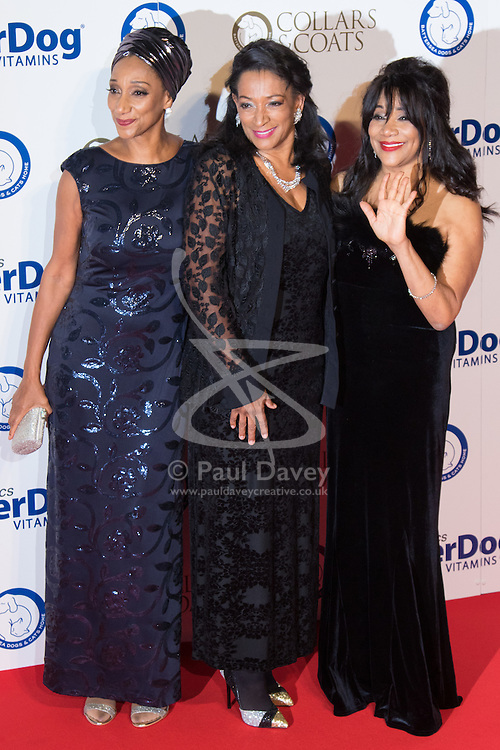 """Battersea, London, November 3rd 2016.  Celebrities and their dogs attend The Evolution at Battersea Park to attend The Battersea Dogs and Cats Home """"Collars and Coats Ball"""". PICTURED: Sister Sledge"""