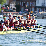 Temple Challenge Cup