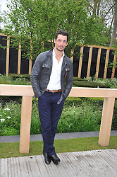 DAVID GANDY at the 2013 RHS Chelsea Flower Show held in the grounds of the Royal Hospital, Chelsea on 20th May 2013.
