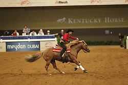 POELS Ann, Whizdom Shines<br /> Kentucky - Alltech FEI WEG 2010<br /> /Stefan Lafrentz