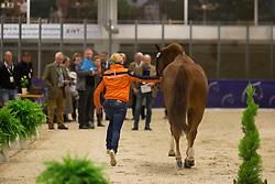 Van Baalen Marlies (NED) - BMC Miciano <br /> Reem Acra FEI World Cup Goteborg 2013<br /> © Dirk Caremans