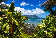 Hideaways Beach and the Na Pali Coast through tropical foliage, Island of Kauai, Hawaii USA