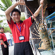 """Donghai Gong"" translates as Donghai Palace, restaurant in Sanya, China. A server shows off a lobster."