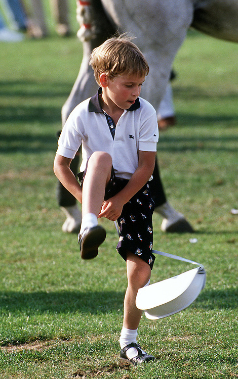 Prince William seen at the Cartier International polo match at the Guards Polo Club, Windsor in July 1989. He is seen playing with his mother Diana, The princess of Wales handbag. Photograph by Jayne Fincher