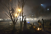 Nov. 16, 2015 - Wegscheid, Bavaria, Germany - GERMANY, Bavaria, Wegscheid; <br /> <br />  Newly arrived asylum seekers strip a tree for firewood at the processing camp on Slovenian side of the border as they await entry into Austria. On the Slovenian-Austrian border, the military of both nations strip-searched migrants on their westward march amid heightened security, causing large numbers to build up at a refugee camp. The shifting mood could threaten European efforts to find unity on the migration crisis. <br /> ©Exclusivepix Media