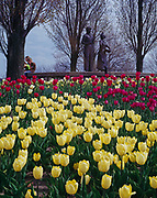 Tulip garden leading to statue of Gertje and Cornelis, 1847 Dutch founders of Holland, Michigan, sculpted by Billie Clark, Window on the Waterfront Park, Holland, Michigan.