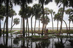 October 7, 2016 - Lake Worth, Florida, U.S. - Branches are down and some flooding is visible in Lake Worth's South Bryant Park early Friday as Hurricane Matthew makes landfall (Credit Image: © Bruce R. Bennett/The Palm Beach Post via ZUMA Wire)