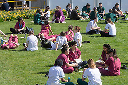 © Licensed to London News Pictures. 30/03/2021. London, UK. Nurses and medical staff sit in the green space of St Thomas' Hospital in Westminster. The warm weather is set to peak at 22c this afternoon. Photo credit: Ray Tang/LNP