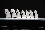 TAO Dance Theatre - photocall