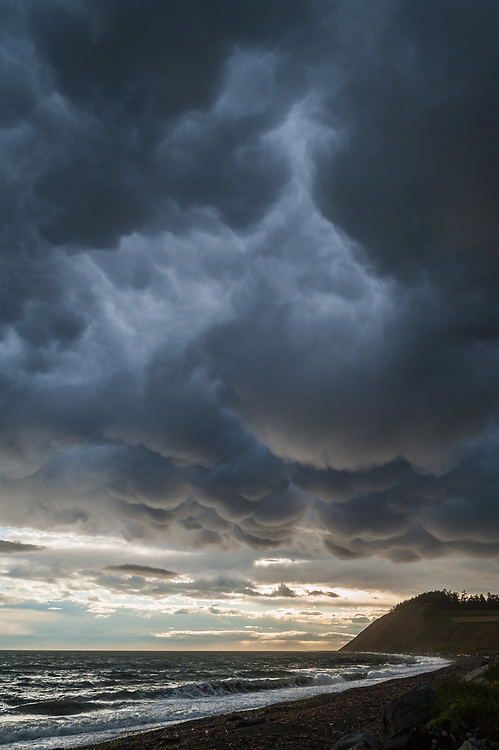Storm clouds, afternoon light, June, Ebey's Landing National Historical Reserve, Admiralty Inlet, Puget Sound, Salish Sea, Whidbey Island, Washington, USA