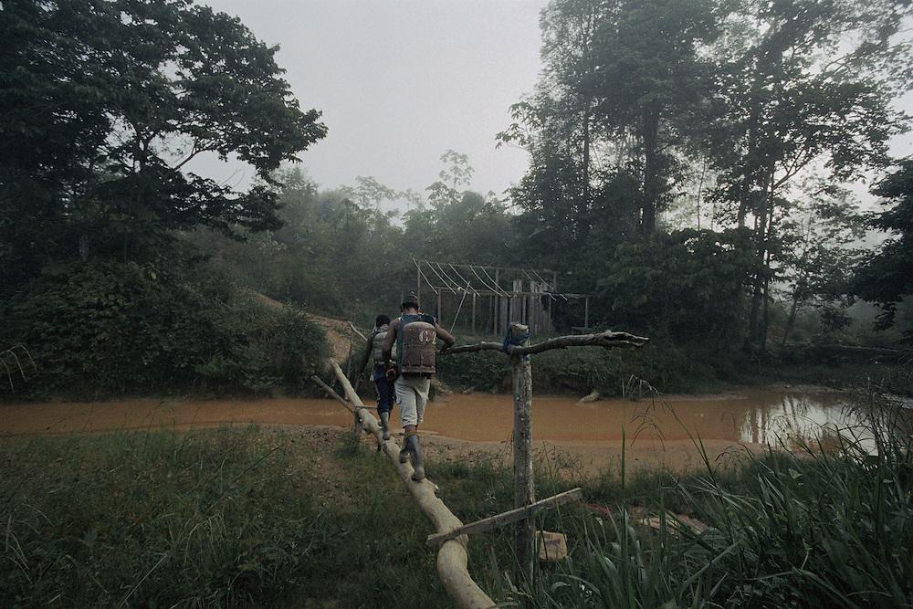 French guiana, Quemada, crique Ipoussing<br /> <br /> Quemada, village clandestin de garimpeiros bresilien.