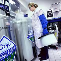 Nederland, Amsterdam , 11 januari 2012..Freya lanceert vrijdag haar monitor over fertiliteitszorg in Nederland. Daar komt het VUMC goed uit. .Op de foto de koelvaten waarin afzonderlijk eicellen en zaadcellen bewaard worden..Foto:Jean-Pierre Jans